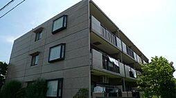 神奈川県横浜市泉区中田北2丁目の賃貸マンションの外観
