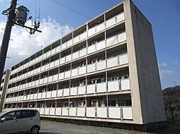 ビレッジハウス広江 1号棟[401号室]の外観
