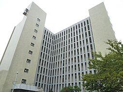 大阪府堺市北区新金岡町4丁の賃貸マンションの外観