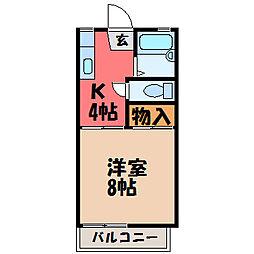 栃木県宇都宮市江曽島本町の賃貸アパートの間取り