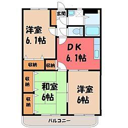 栃木県小山市東城南1丁目の賃貸マンションの間取り