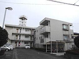 ニューハイム鈴木[101号室]の外観