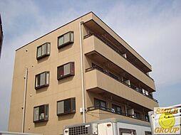 千葉県市川市鬼高4丁目の賃貸マンションの外観