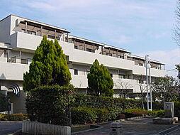 フィオーレ豊島園2[2階]の外観
