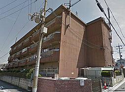 寺田ハイツ[3階]の外観