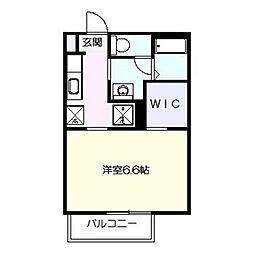 コーラルヒルズ東戸塚シングルステージ[1階]の間取り