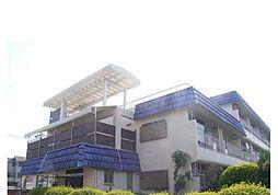 武蔵野サンハイツ[3階]の外観