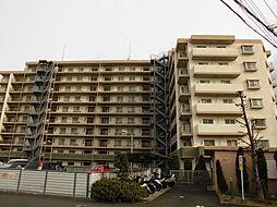 埼玉県所沢市小手指南4丁目の賃貸マンションの外観