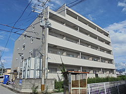 滋賀県彦根市小泉町の賃貸マンションの外観