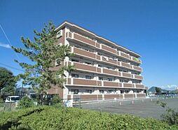 N2002[3階]の外観