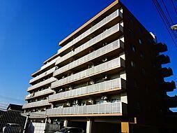 栃木県小山市宮本町3丁目の賃貸マンションの外観