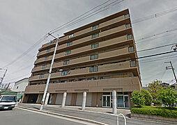 レピア堺湊[7階]の外観