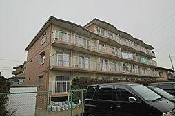 千葉県市川市塩焼2丁目の賃貸マンションの外観