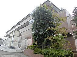 [テラスハウス] 神奈川県横浜市青葉区奈良1丁目 の賃貸【/】の外観