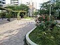 楓川新富橋公園...