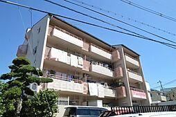 稲ビューハイツ[3階]の外観