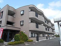 埼玉県草加市青柳7丁目の賃貸マンションの外観