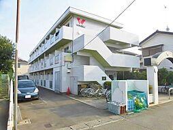 神奈川県大和市上草柳8丁目の賃貸マンションの外観
