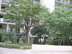 のむら貝塚ガ−デンシティ六番館[211号室]の外観