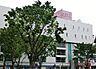周辺,ワンルーム,面積17.35m2,賃料3.5万円,西武新宿線 新所沢駅 徒歩7分,西武新宿線 航空公園駅 徒歩25分,埼玉県所沢市美原町2丁目2940-22