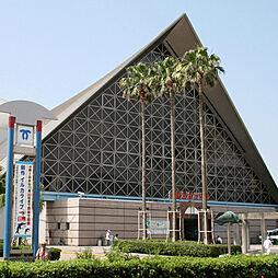 神戸市立須磨海浜水族園 597m