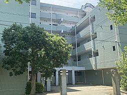 茨城県つくば市松代3丁目の賃貸マンションの外観