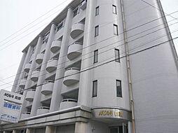 NOVA白亜[501号室]の外観