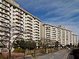 西葛西駅 6.9万円