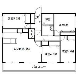 仮)発寒6-5MS[306号室]の間取り