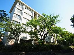 神陵台東住宅57号棟[4階]の外観