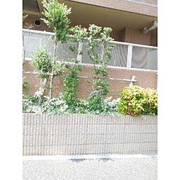 スカイコート都立大学第三[1階]の外観