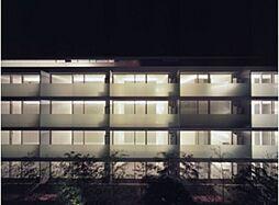 treform(トレフォルム)[1階]の外観
