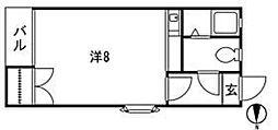ピサ樋井川[203号室]の間取り