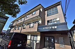大阪府松原市南新町1丁目の賃貸マンションの外観