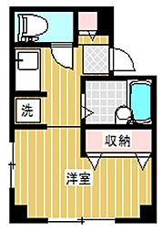 東京都杉並区善福寺3丁目の賃貸マンションの間取り