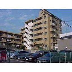 ペルリーノ武蔵関E[3階]の外観