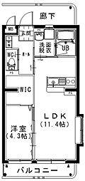 岡山県総社市真壁の賃貸マンションの間取り
