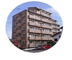 第7高島マンション[303号室]の外観