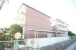 千葉県市川市国分1丁目の賃貸マンションの外観