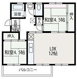 埼玉県新座市新座3丁目の賃貸マンションの間取り