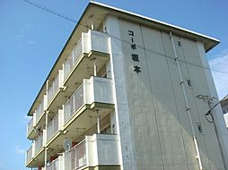 コーポ坂本[303号室]の外観