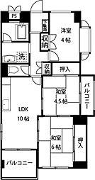 神奈川県川崎市宮前区土橋3丁目の賃貸マンションの間取り