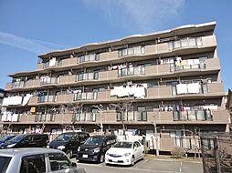 フォレストマンション[105号室]の外観