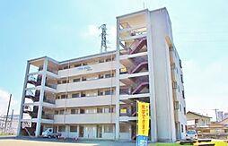 長野県安曇野市豊科の賃貸マンションの外観