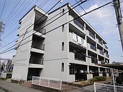 埼玉県草加市手代3丁目の賃貸マンションの外観