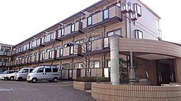 神奈川県川崎市高津区二子3丁目の賃貸マンションの外観