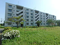 栃木県小山市大字雨ケ谷の賃貸マンションの外観