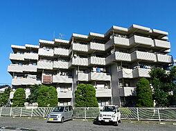 ハイリビングバレー新所沢[4階]の外観
