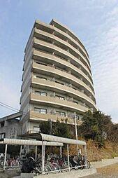 愛知県額田郡幸田町大字坂崎字西長根の賃貸マンションの外観