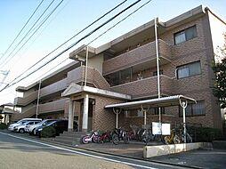 アンシャンテ都府楼[206号室]の外観